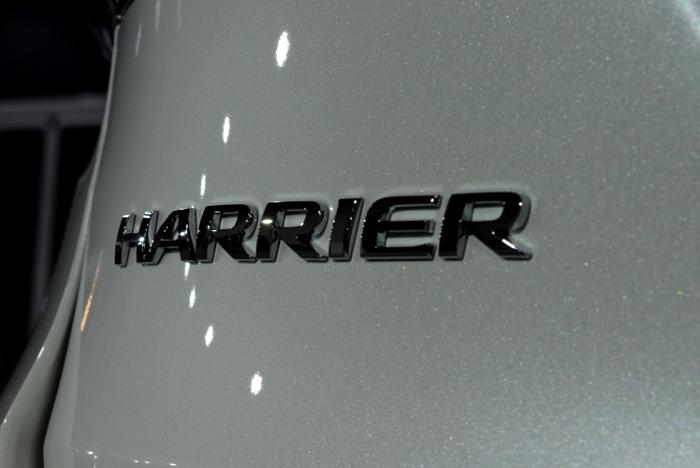 ハリアー-11